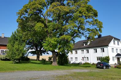 Faarlund Bed and Breakfast